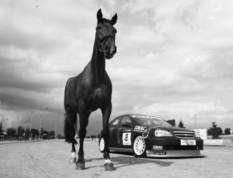 MEET THE FIRST SELF-DRIVING CAR. HIS NAME IS MILO. HE'S A HORSE.
