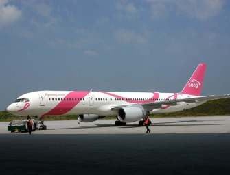 U.S Airlines Go Pink To Support National Breast Cancer Awareness Month